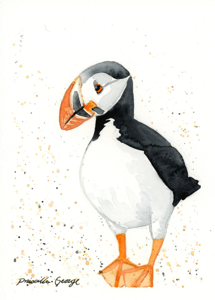 Puffin - Priscilla George Fine Art