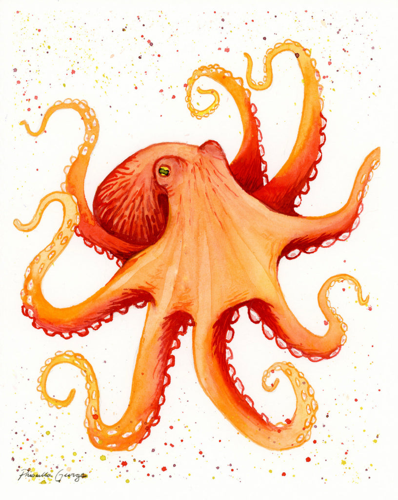 Orange Octopus - Priscilla George Fine Art