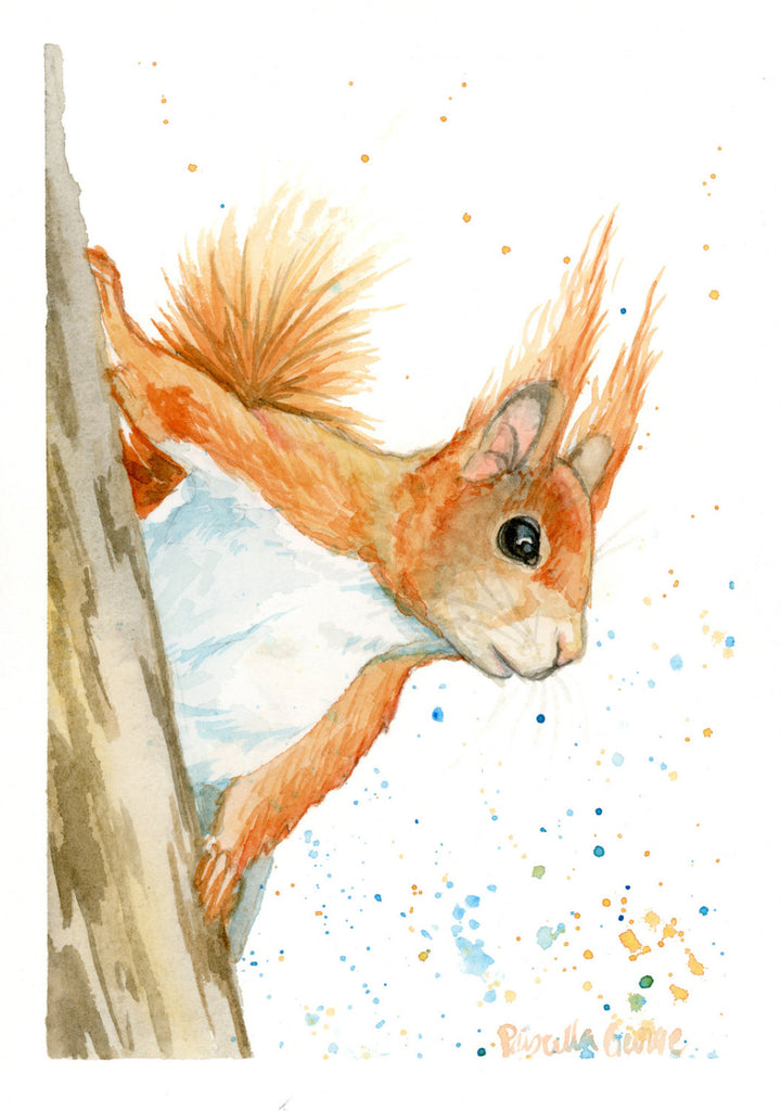 Red Squirrel - Priscilla George Fine Art