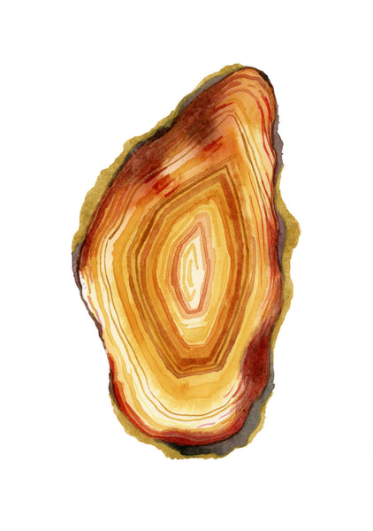 Yellow Agate Slice - Priscilla George Fine Art