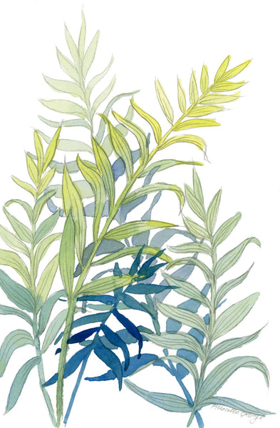 Tropical leaves - Priscilla George Fine Art