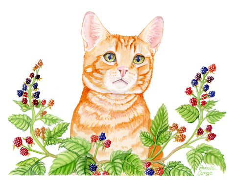 Cat Brambles - Priscilla George Fine Art