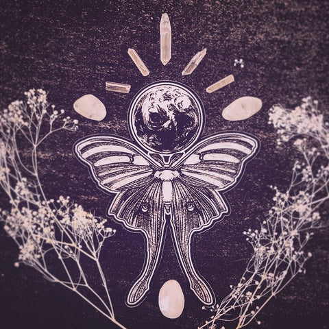 Luna Moth Moon Sticker