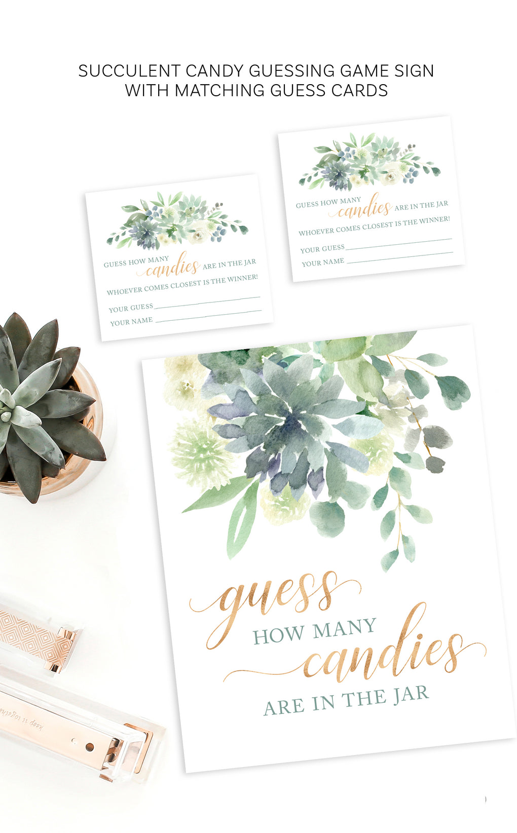 Succulent Baby Shower Candy Guessing Game