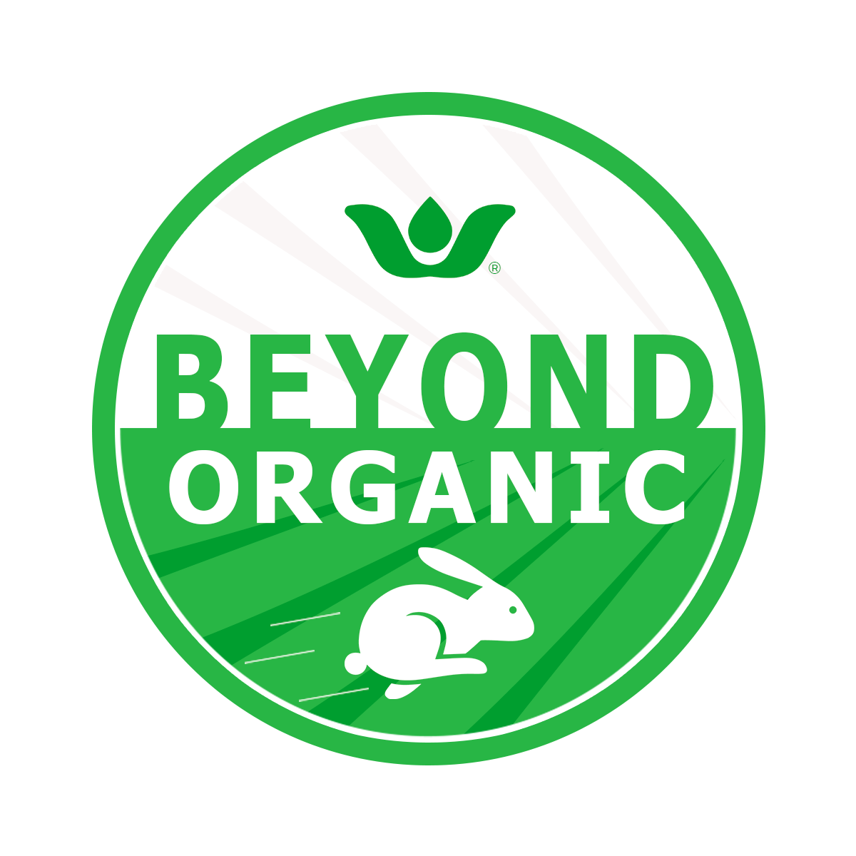 Essentia Beyond Organic Certification