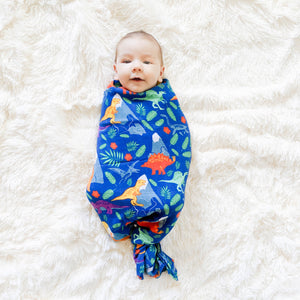 Rainbow Dinos Swaddle Blanket