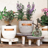 Late Bloomer - Wood Planter