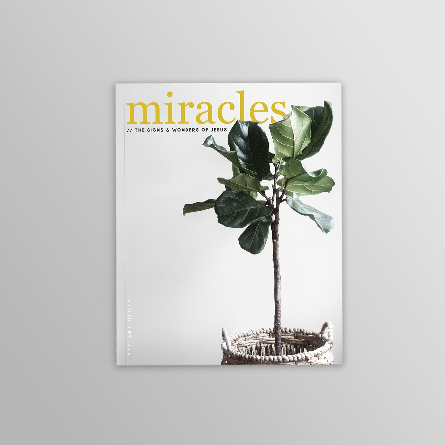 Miracles Devotional: The signs & wonders of Jesus (35-days)