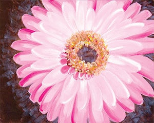 Adult Canvas- Pink Gerbera Daisy