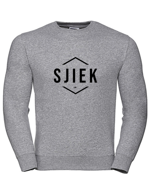 SJIEK trui SJIEK sweater SJIEK zilver