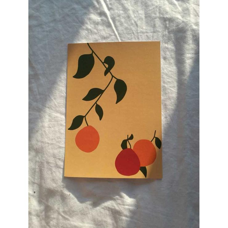 'Oranges on the Vine' A3 Print By James Wilson