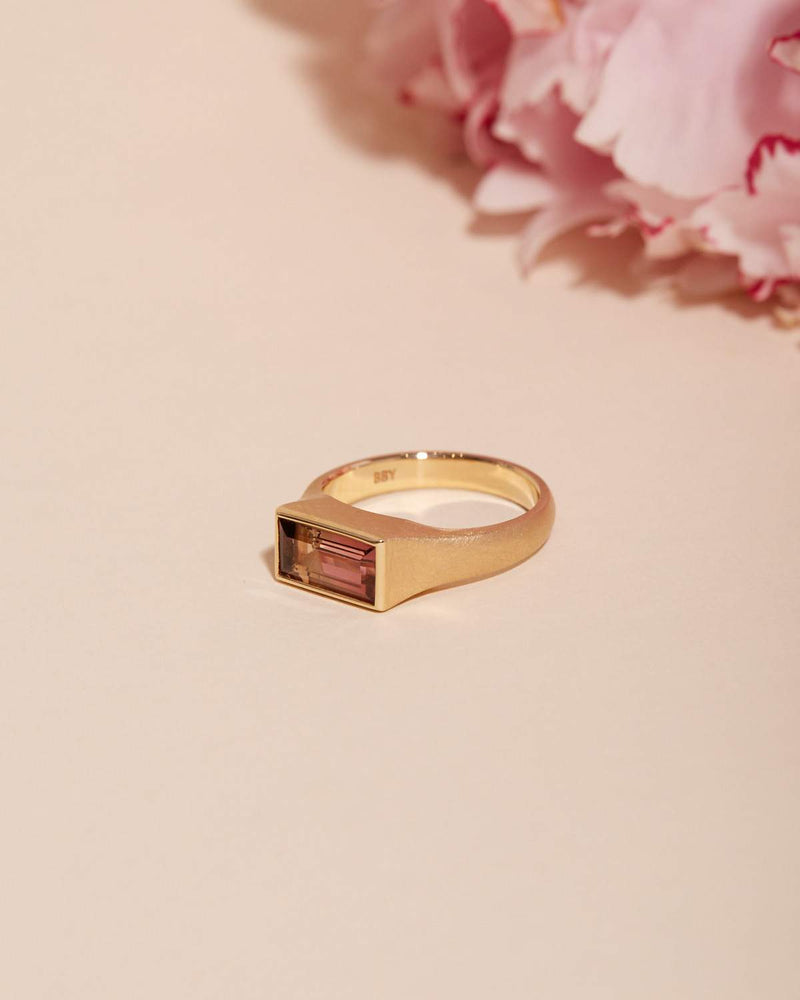 Nico Ring with Watermelon Tourmaline - 14ct Gold