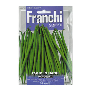 Seeds, Dwarf French Bean - Fagiolo nano vanguard
