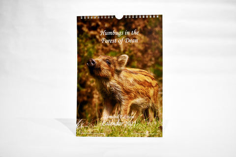 """Something Smells Odd"" Caldwell Creations Calendars 2021"