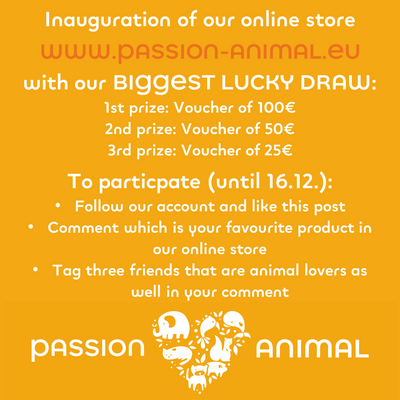 Our BIGGEST prize draw to celebrate the online store launch!
