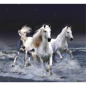 5D Diamond DIY Keep Moving Horse Painting Home Decor Embroidery Painting Resin Home Decor Cross Stitch Best GIft