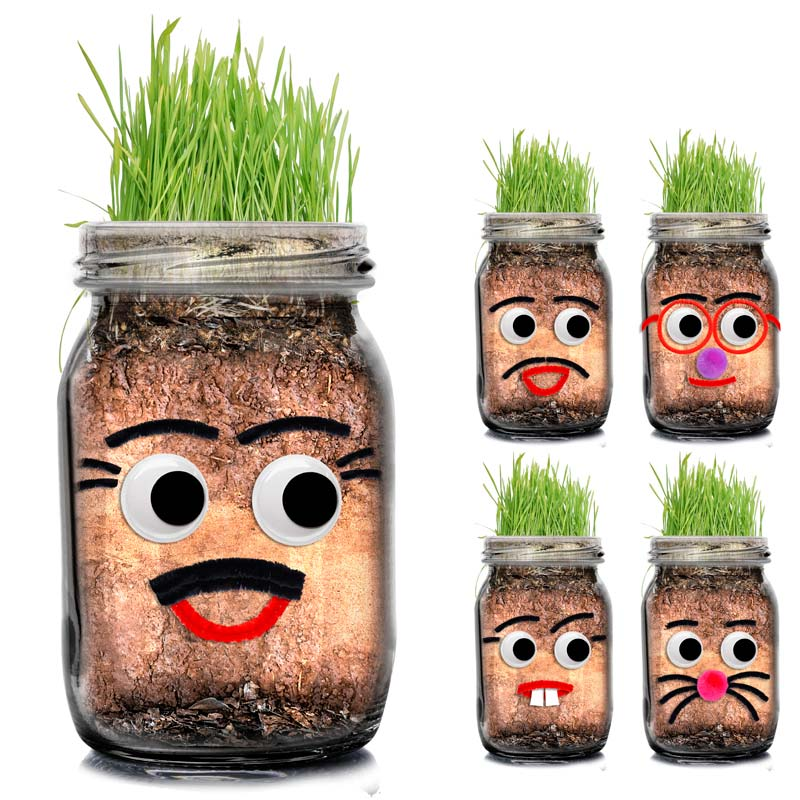 DIY Grass Heads - From $2.50