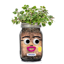 Load image into Gallery viewer, DIY Herb Heads
