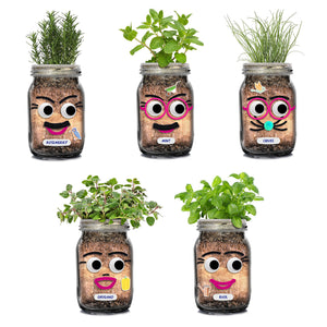DIY Herb Head Planting Kit
