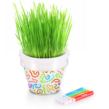 Load image into Gallery viewer, Grass Head Flower Pot Kit