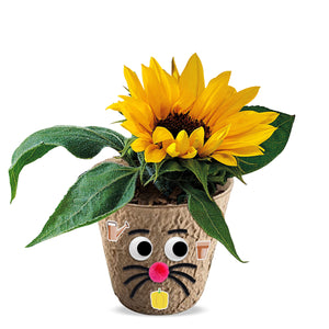 DIY ECO flower Head kit