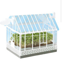 Load image into Gallery viewer, Pre-order for July - DIY Vegetable Greenhouse Planting Kit