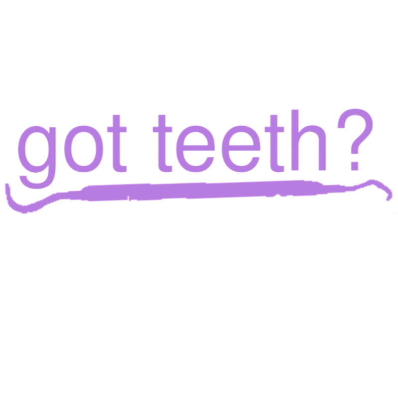 "got teeth? Transfer Vinyl Decal 6.5"" x 2.5 """
