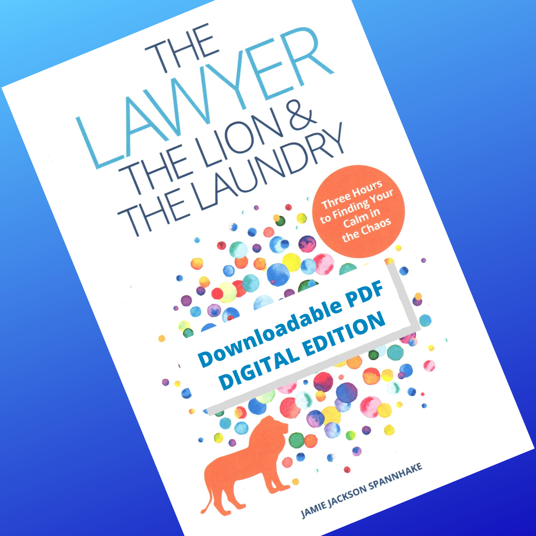 The Lawyer, the Lion, & the Laundry (e-book) - NOW AVAILABLE!