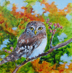 Autumn Owl by Karen Wolf (Framed Painting)