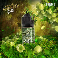 Gattago Nic Salts by Twelve Monkeys 30ML