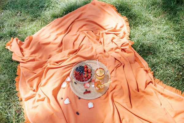 summer picnic on the orange blanket