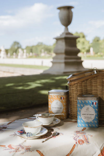 tea picnic in the parc
