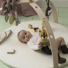 Baby gym arche nature