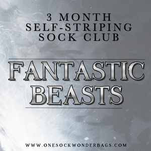 3 MONTH SELF-STRIPING SOCK CLUB - FANTASTIC BEASTS