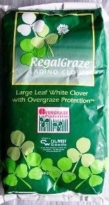 Ladino Clover Seed (Regal Graze)