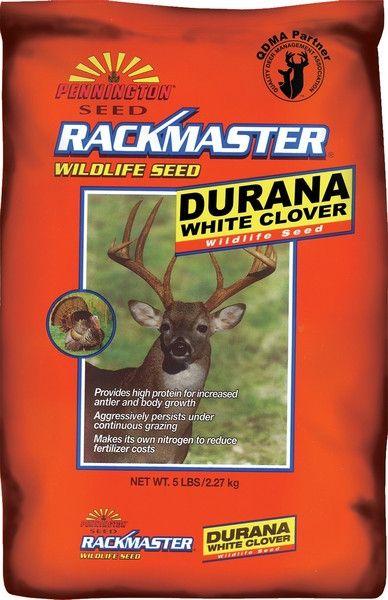 Durana White Clover Food Plot Seed - 5 Lbs
