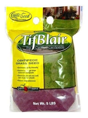Tifblair Centipede Grass Seed Certified - 5 Lbs.