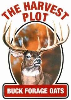 Buck Forage Oats Food Plot Seeds - 50 Lbs.