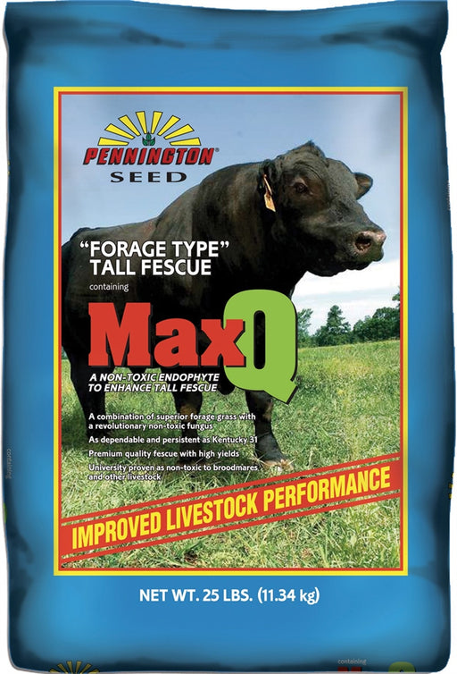 Pennington MaxQ Tall Fescue (Jesup) Grass Seed - 25 Lbs.