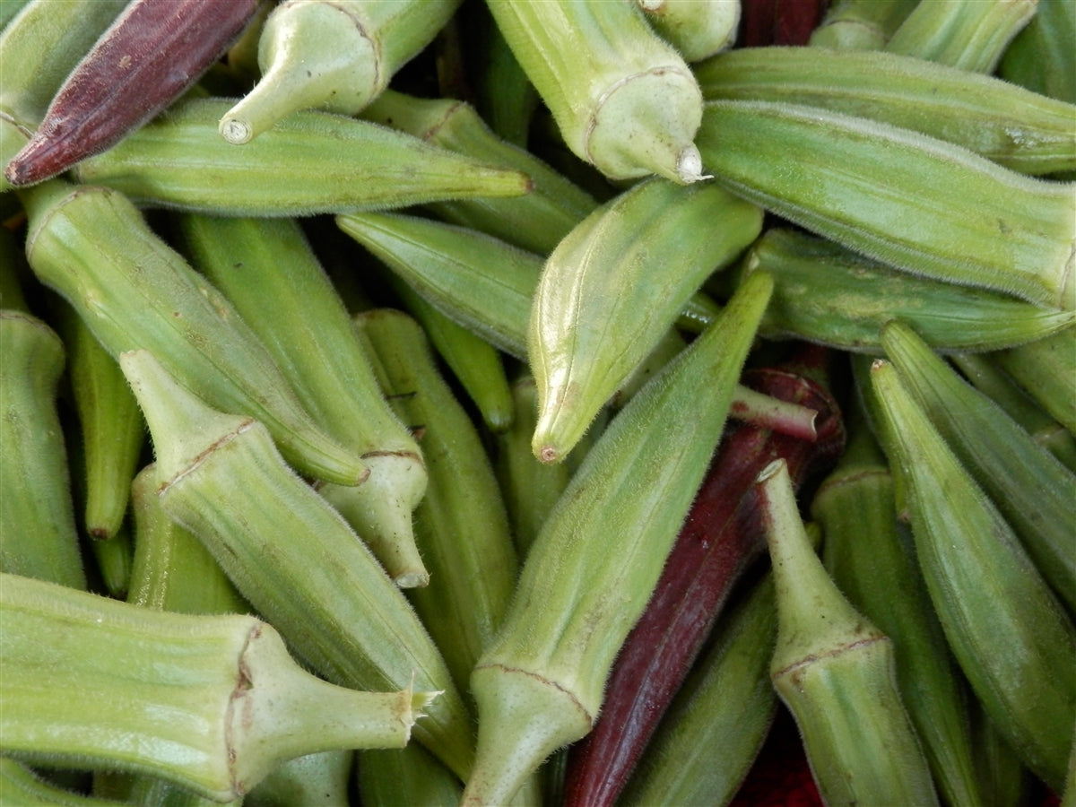 Okra Clemson Spineless Seed - 1 Packet