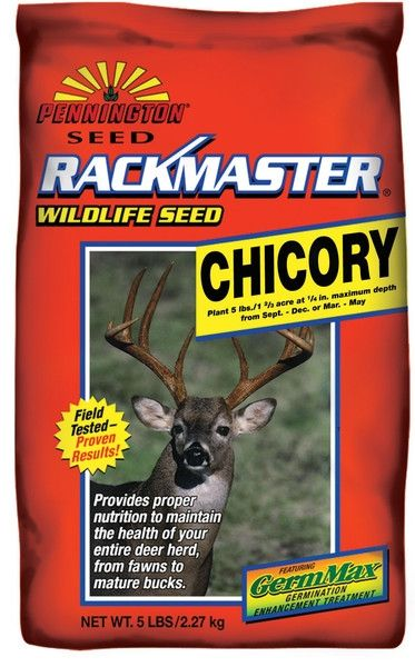 Rackmaster Chicory Food Plot Seed - 5 Lbs