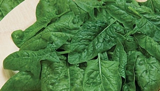 Spinach Melody Seed Hybrid - 1 Packet