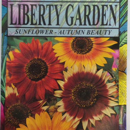 Sunflower - Autumn Beauty - 1 Packet