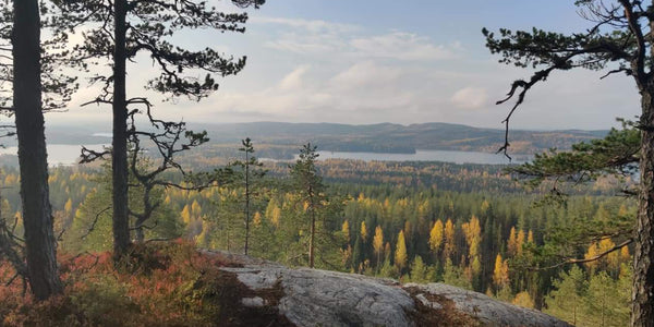 Visit unique nature destination - Lapland