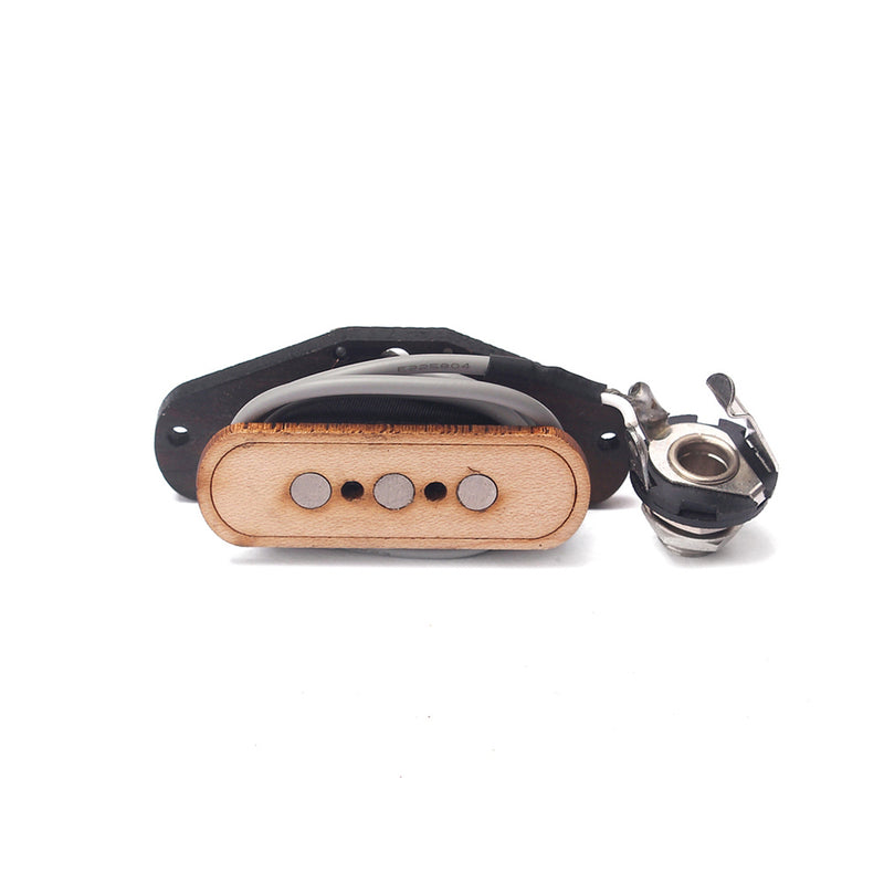 3-String Single Coil Pickup Only
