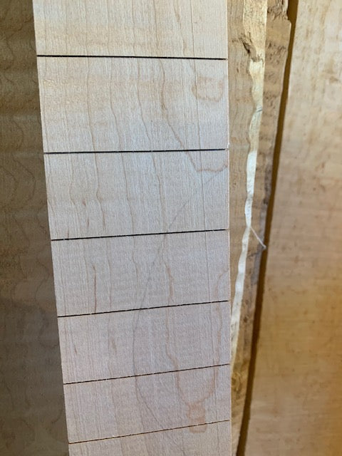 "MGB Birds Curly Maple Slotted Fretboard | 25.5"" Scale"