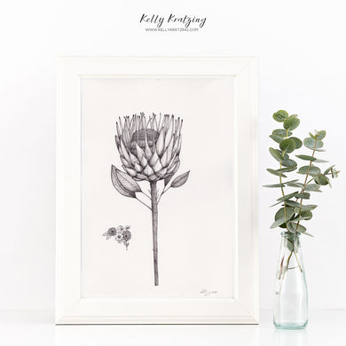 ORIGINAL Protea Artwork - pen and ink drawing