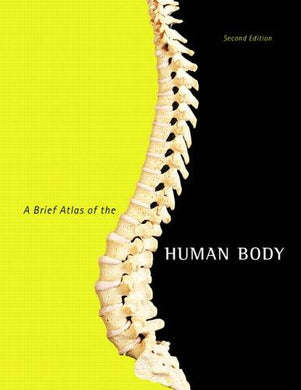 A Brief Atlas of the Human Body - NJExpat