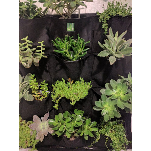 12 Pocket Outdoor Vertical Living Wall Planter, Free shipping