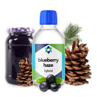 blueberry-haze-hybrid-terpene